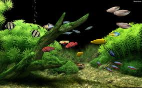 Dream Aquarium Screensaver Screenshot 4