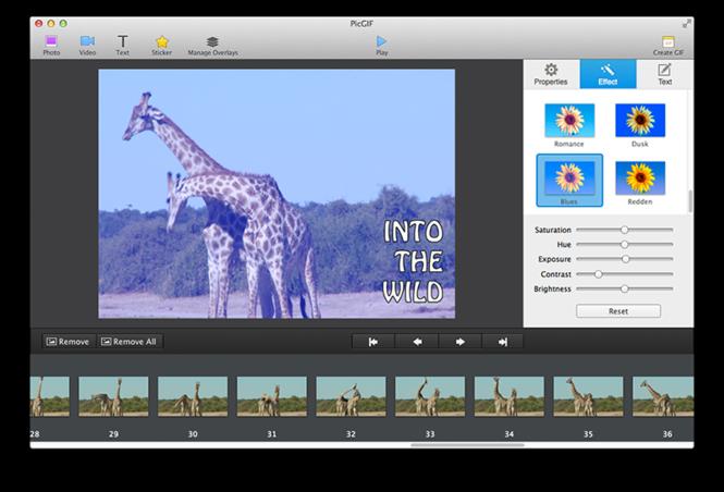 PicGIF for Mac Screenshot 3