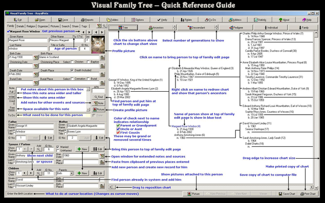 Visual Family Tree Maker Screenshot