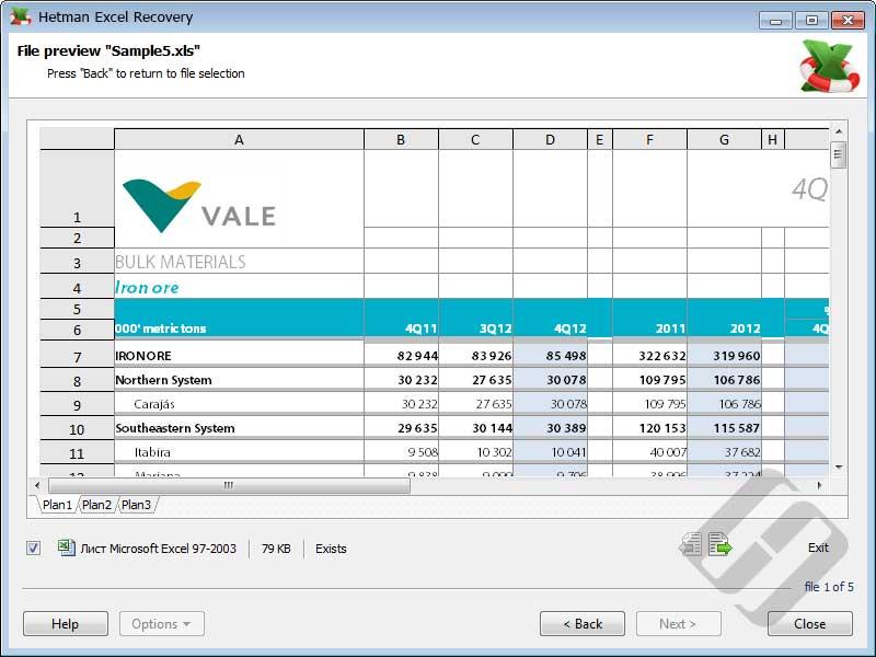 Hetman Excel Recovery Screenshot 5