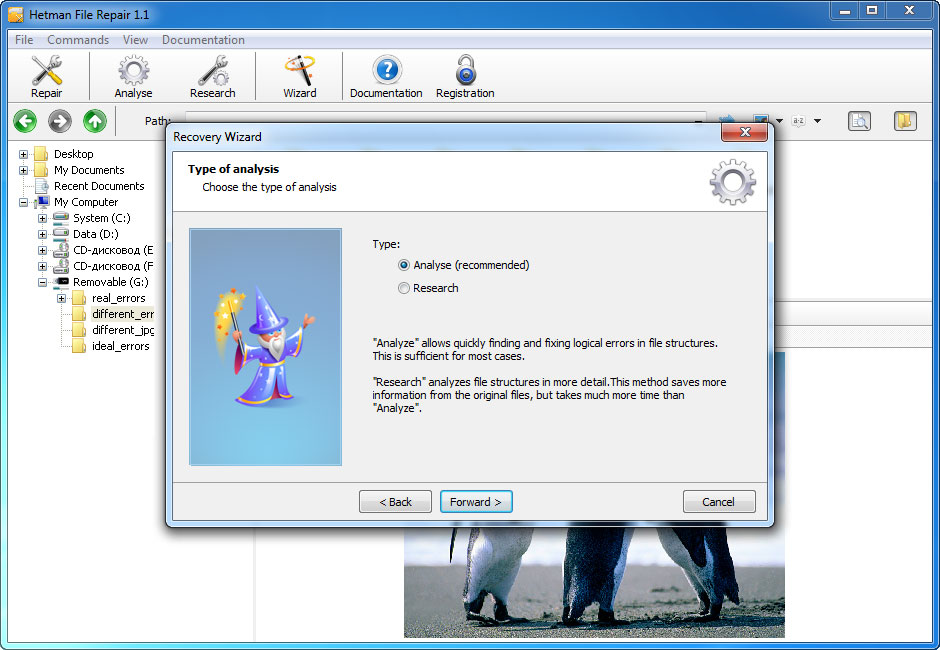 Hetman File Repair - Repair Files Corrupted after Data Recovery Process Screenshot 2