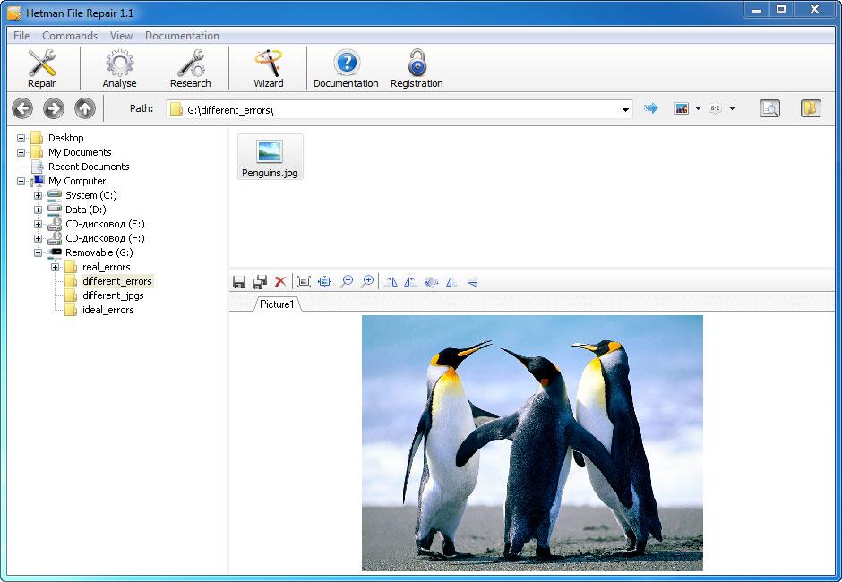Hetman File Repair - Repair Files Corrupted after Data Recovery Process Screenshot 5