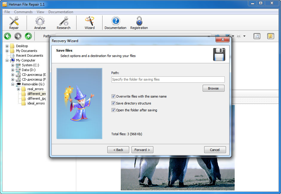 Hetman File Repair - Repair Files Corrupted after Data Recovery Process Screenshot 3