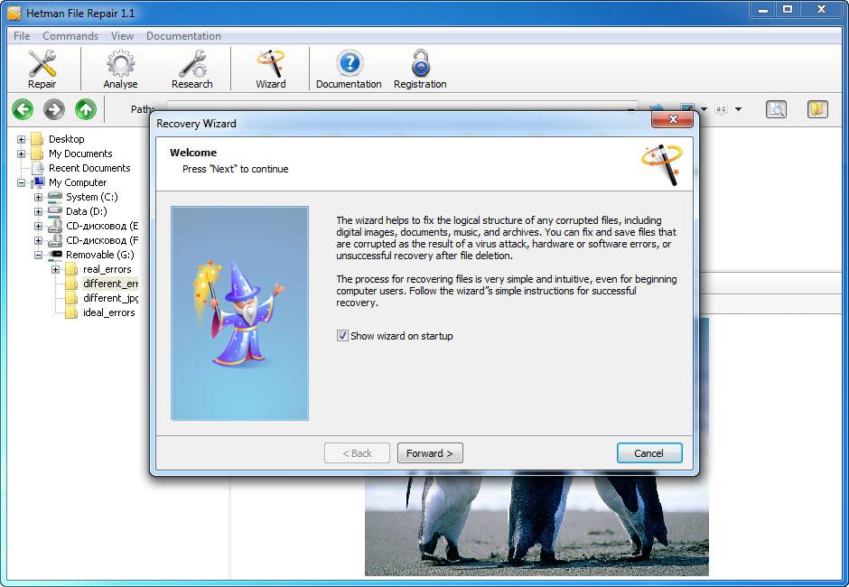 Hetman File Repair - Repair Files Corrupted after Data Recovery Process Screenshot 8