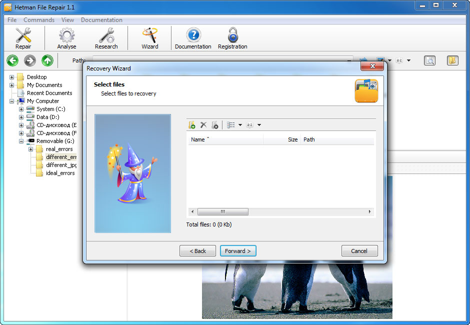 Hetman File Repair - Repair Files Corrupted after Data Recovery Process Screenshot 4