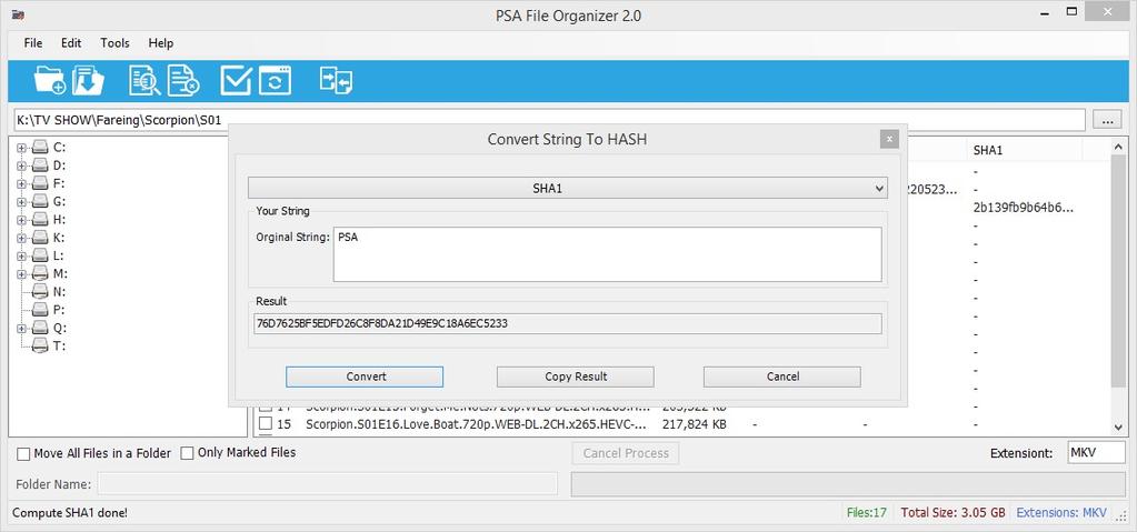 PSA File Organizer Screenshot 4