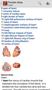 Pocket Atlas of Anatomy 2