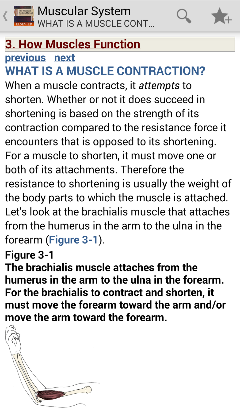 The Muscular System Manual: The Skeletal Muscles of the Human Body Screenshot 3