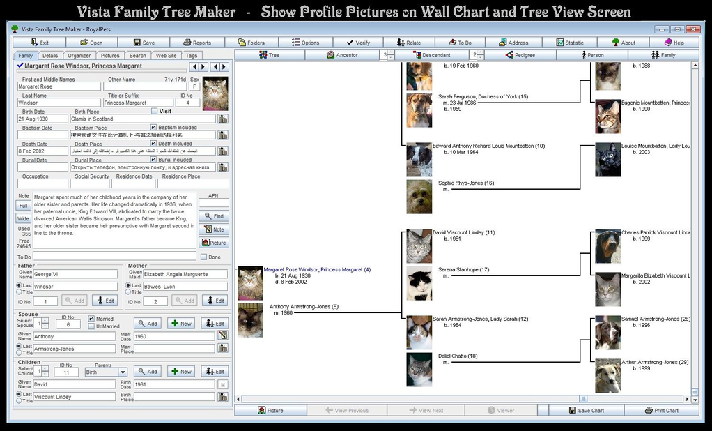 Vista Family Tree Maker Screenshot