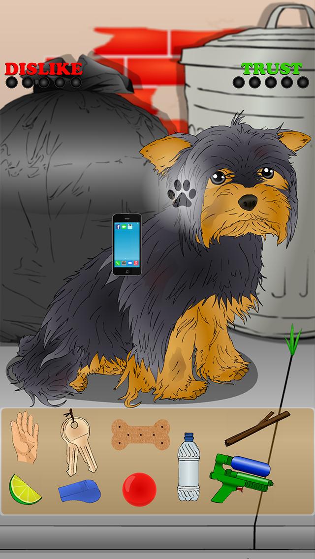 Poor Little Dog: Yorkie Screenshot