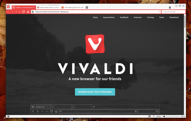 Vivaldi Screenshot 3