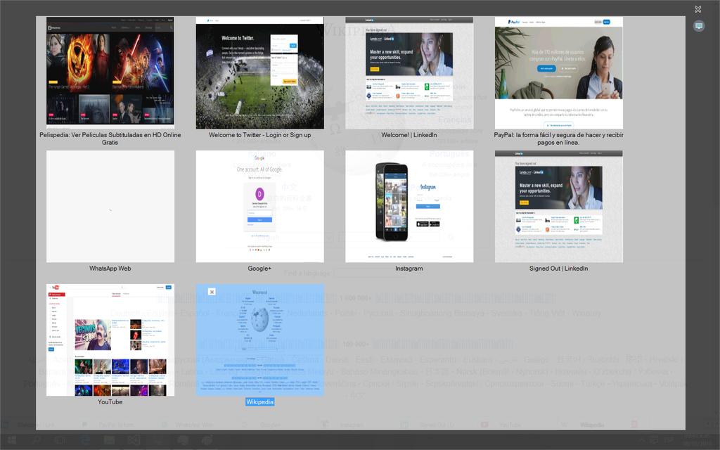 Pampa Browser Screenshot 3