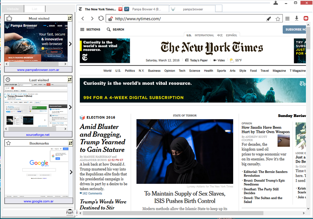 Pampa Browser Screenshot 2