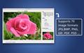 Super Vectorizer for Mac 4