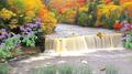 Autumn Waterfall 2