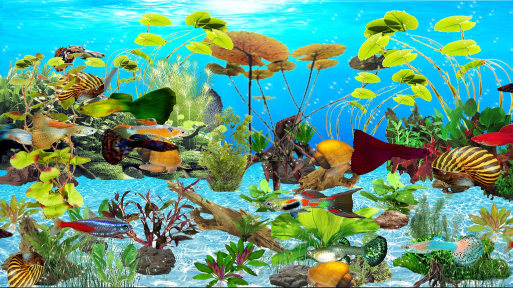 Guppies Deluxe Aquarium Screenshot 3