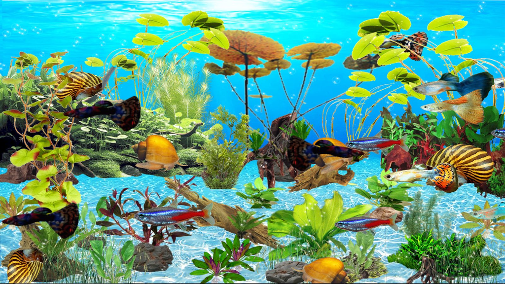 Guppies Deluxe Aquarium Screenshot