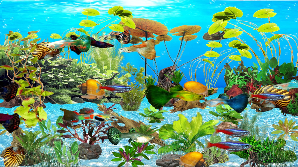 Guppies Deluxe Aquarium Screenshot 2