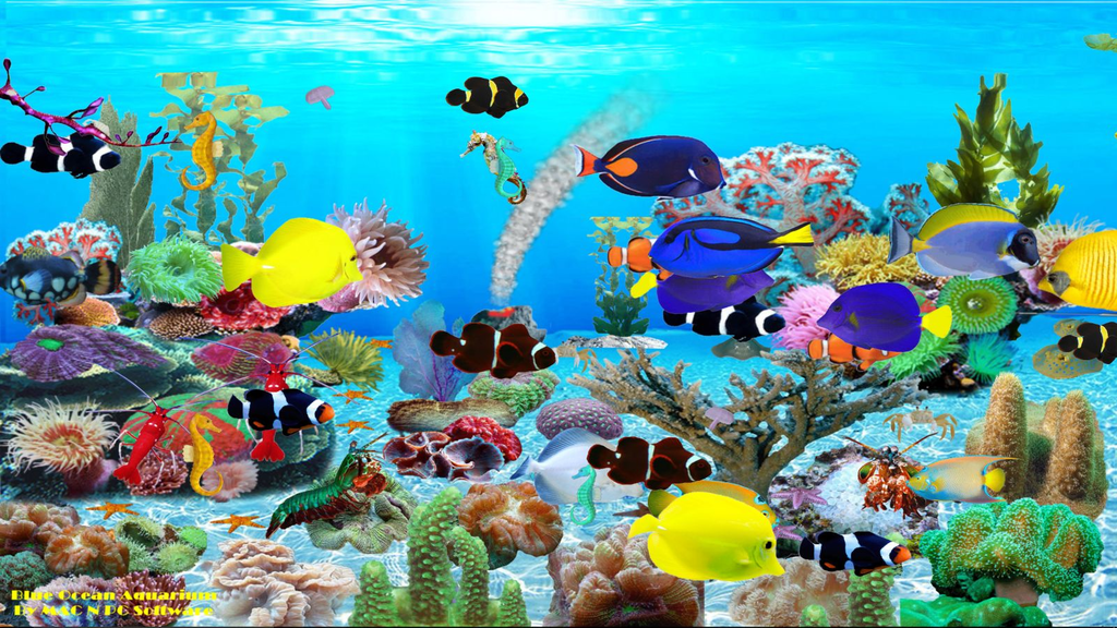 Blue Ocean Aquarium Wallpaper Screenshot 2