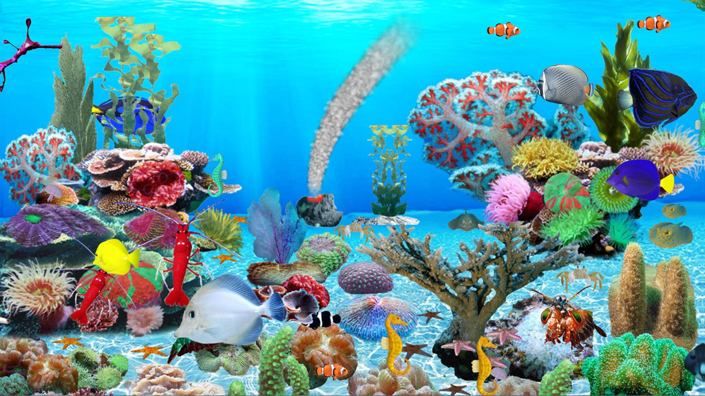 Blue Ocean Aquarium Wallpaper Screenshot 1