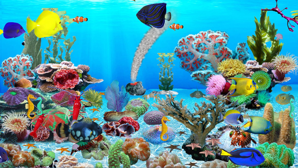 Blue Ocean Aquarium Wallpaper Screenshot 3