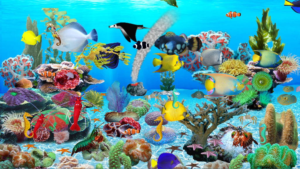 Blue Ocean Aquarium Wallpaper Screenshot 4