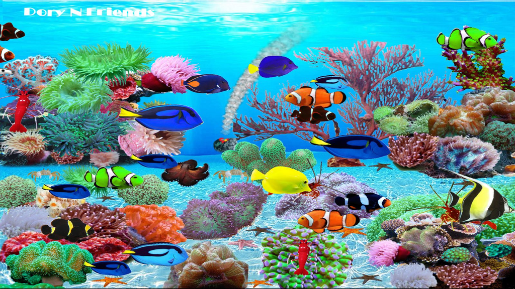 Dory N Friends Wallpaper Screenshot 1