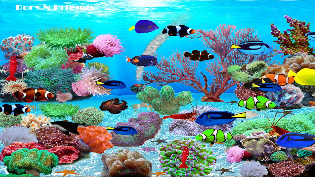 Dory N Friends Wallpaper Screenshot 3