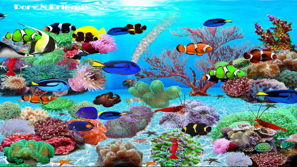 Dory N Friends Wallpaper Screenshot 2