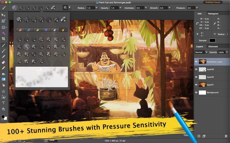 Pro Paint for Mac Screenshot 2