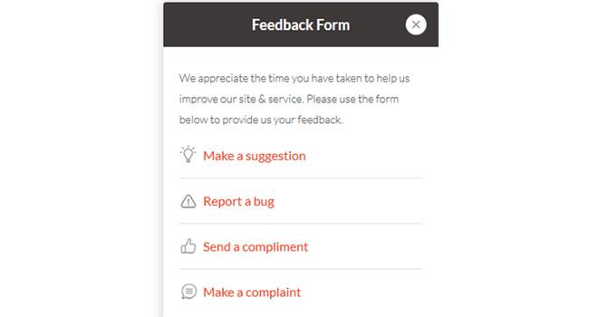 Feedback Form Script Screenshot 1