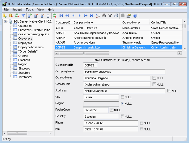 DTM Data Editor Screenshot