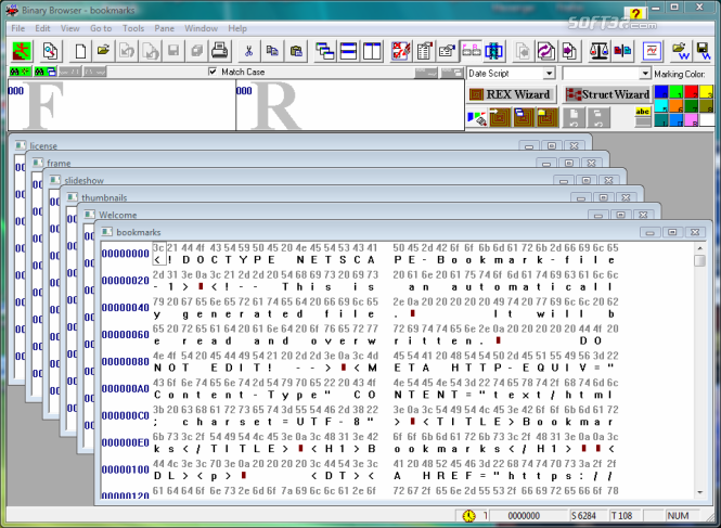 Binary Browser Screenshot 3