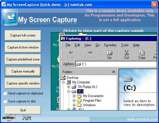 My Screen Capture ActiveX Screenshot