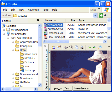 Explorer View File Viewer Screenshot