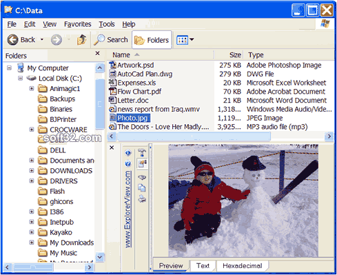Explorer View File Viewer Screenshot 3