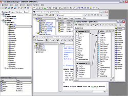 EMS SQL Manager for DBISAM Screenshot 1