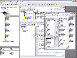 EMS SQL Manager for DBISAM Screenshot 3