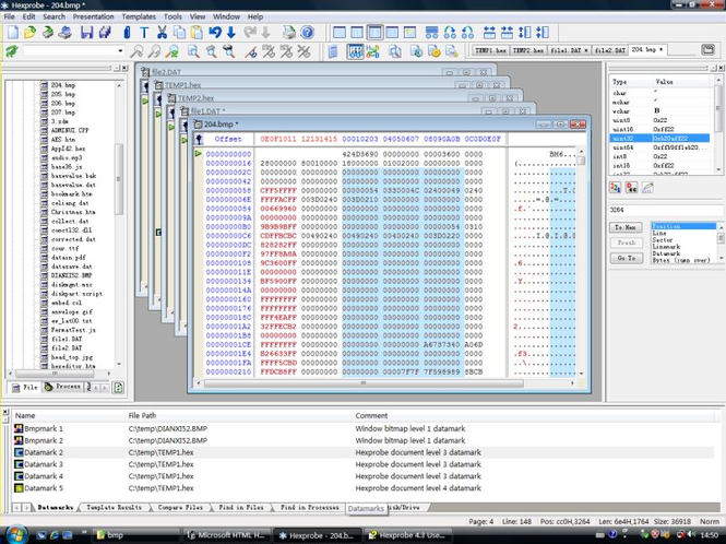 Hexprobe Hex Editor Screenshot 1