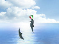 Dolphin Dreams Screensaver Screenshot
