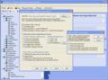 Xtreeme SiteXpert Standard Edition 1