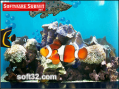 Aquarium from Wholesale Drop Ship Research Product 3