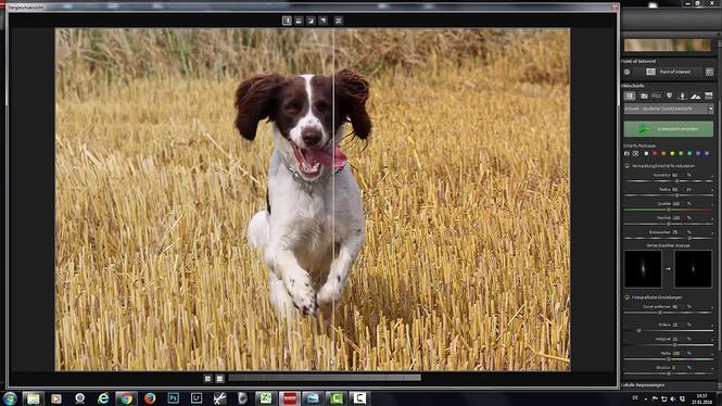 Sharpen Projects Professional Screenshot