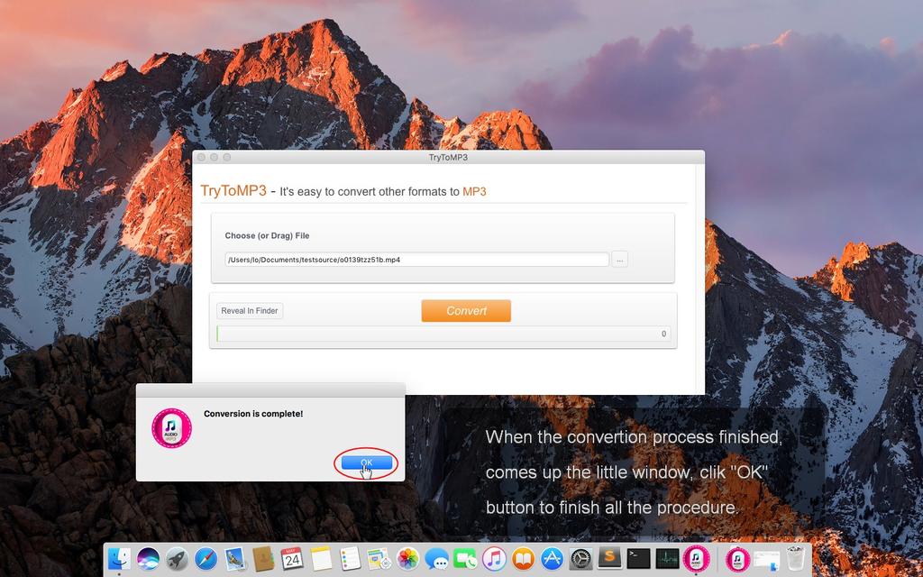 TryToMP3 Screenshot 5