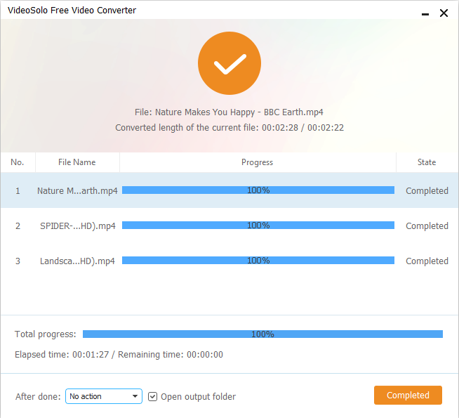 VideoSolo Free Video Converter Screenshot 4