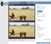 VideoSolo Video to GIF Converter 4