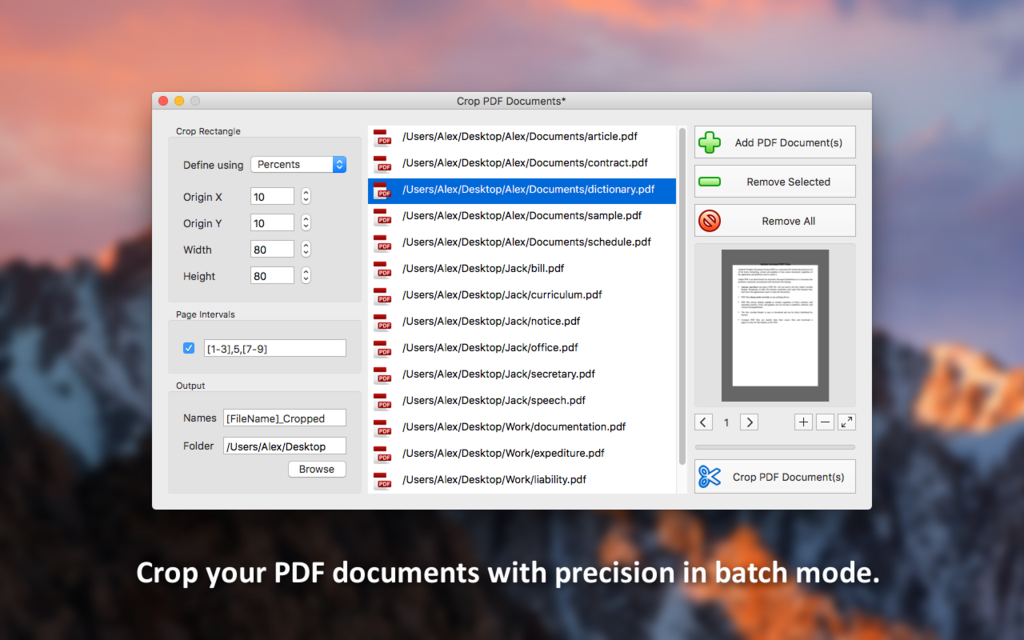 PDF Plus Screenshot