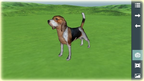 Animals for Kids 3D Screenshot