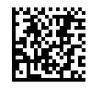 DataMatrix 2D Barcode ASP Component 1