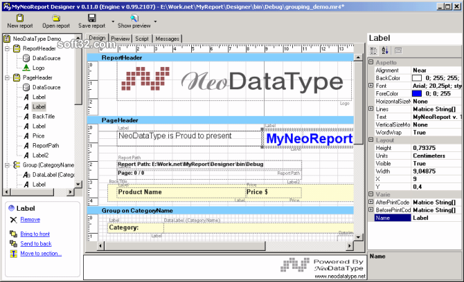 MyNeoReport .Net Reporting Tool Screenshot